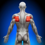 Study: Rotator cuff home-based exercise as effective as outpatient therapy