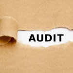 Audit trails, audit controls, and security within the chiropractic practice