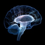 Researchers explore possibility of LLLT as a treatment option for those with neurodegenerative disorders