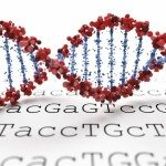 Targeted treatment: The promise of personalized care through nutrigenetic testing