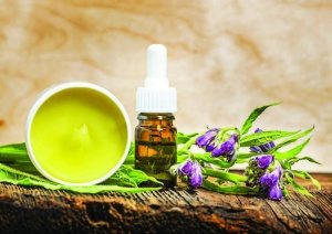 Why topical comfrey deserves a spot in your chiropractic practice