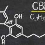 Understanding the entourage effect of CBD