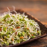 The interesting benefits of alfalfa extract