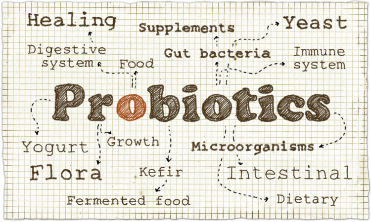 If you're a patient deciding when to take probiotics, check out the guides listed and talk with your DC or health care professional...