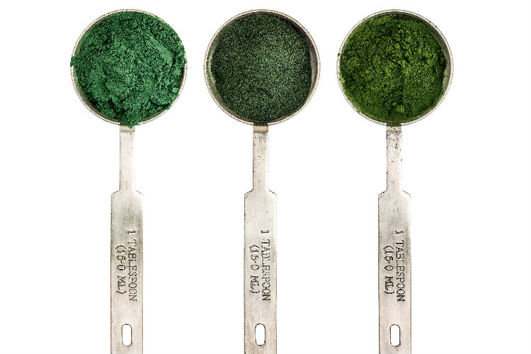 What exactly is blue-green algae, and how can it help your patients?