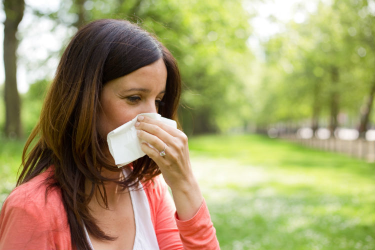If you have allergies yourself, you know how horrible they can make you feel. How do you find relief without taking over-the-counter medications that make you sleepy and unable to concentrate? Here are a few natural allergy relief options to consider.