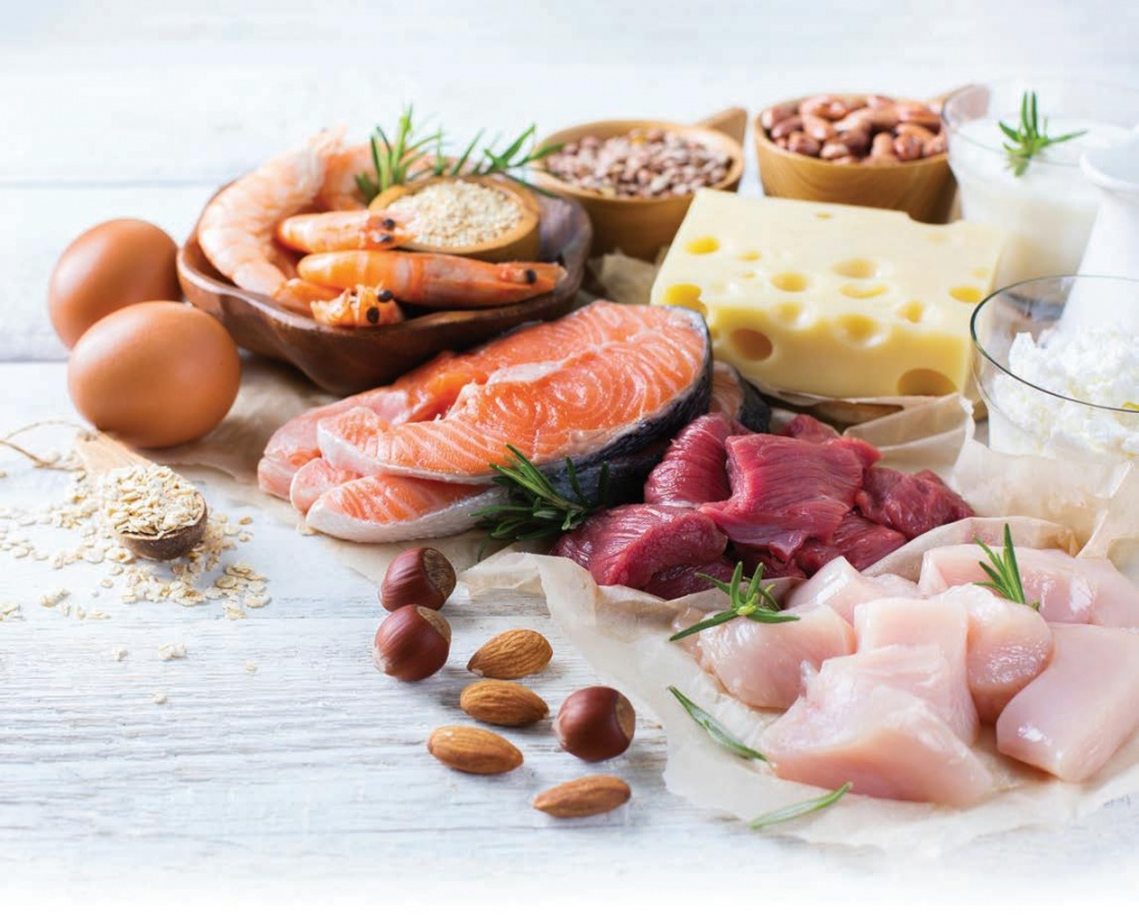 Newer research shows that protein quality counts for overall health while losing and maintaining body weight, unlike the early high-protein diets that advocated eating higher saturated-fat proteins.
