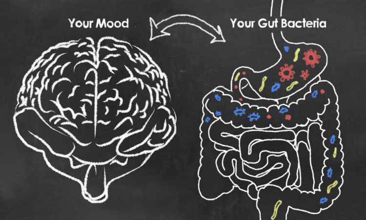 Showing the connection between the gut microbiome and depression by way of what many health care experts refer to as the gut-brain axis.