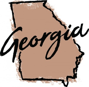 Georgia Chiropractic Association promotes, represents, educates and protects the entire chiropractic community in Georgia and advocate for unrestricted access to chiropractic care.