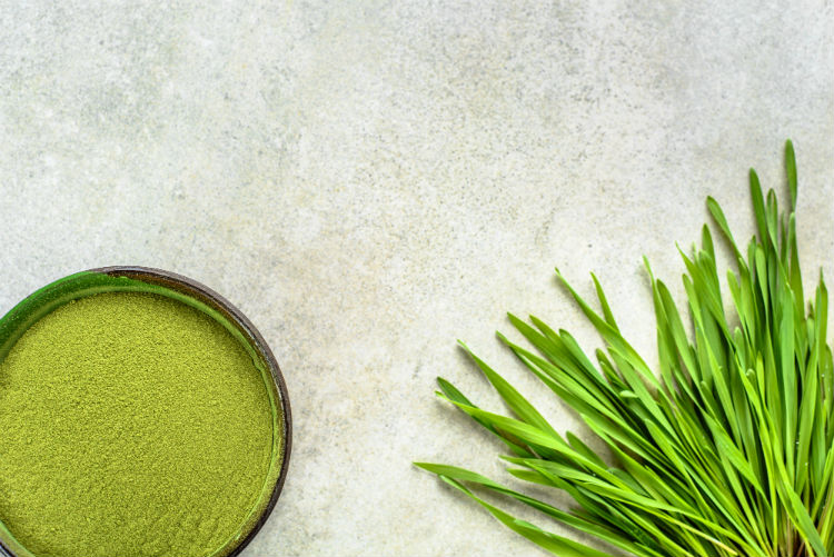 A table in a practice of a patient about to understand barley grass benefits