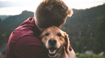 Your best friend could be your key to a healthy immune system