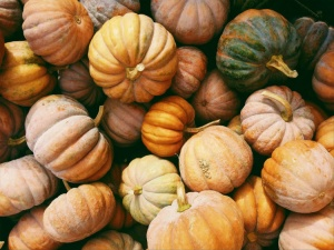 3 reasons to try pumpkin oil this fall