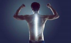During walking and running, the spine is one link in a biomechanical kinetic chain, where movement at one joint influences movement at other joints.