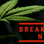 Breaking News Update: President signs Farm Bill, legalizing industrial hemp