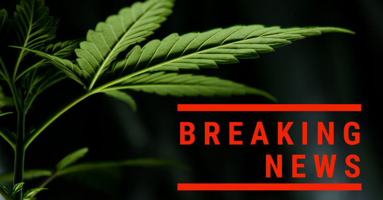 CBD breaking news