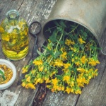 Benefits of St. John's Wort for mood disorders