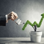 Growth hacking: Market on a budget