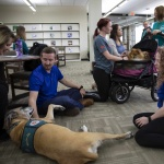 "CUKC students ""Paws and Relax"" with therapy dogs on campus"