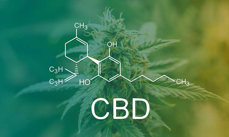 CBD news is coming fast and furious as public sentiment drives the approval of CBD legislation, making 2020 a big year for CBD sales in food and drink...
