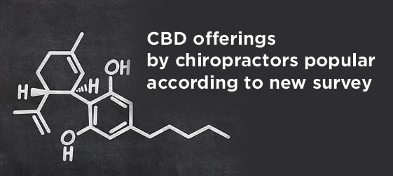 CBD popular in new chiropractor survey
