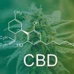 Cannabidiol's intriguing role in joint health