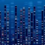 Using DNA Testing to Offer Patients a More Personalized Healthcare Plan