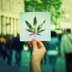 CBD News: Industry watches as Cannabis Banking Bill approved by U.S. House
