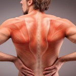 Not TENS, but TEMS for both patient back pain and weight loss