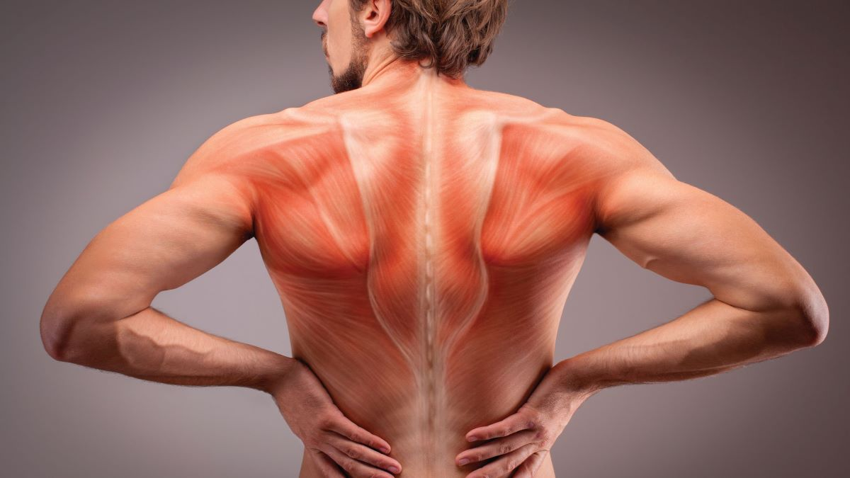 Introduced two years ago in the U.S., TEMS is a one-two punch for both back pain and weight loss for clinics looking to...