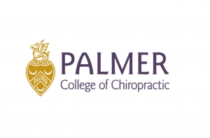 Palmer feature image