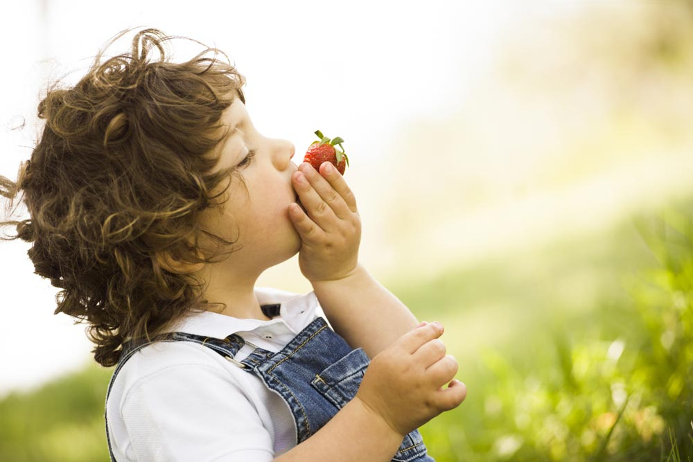 Child eating a strawberry
